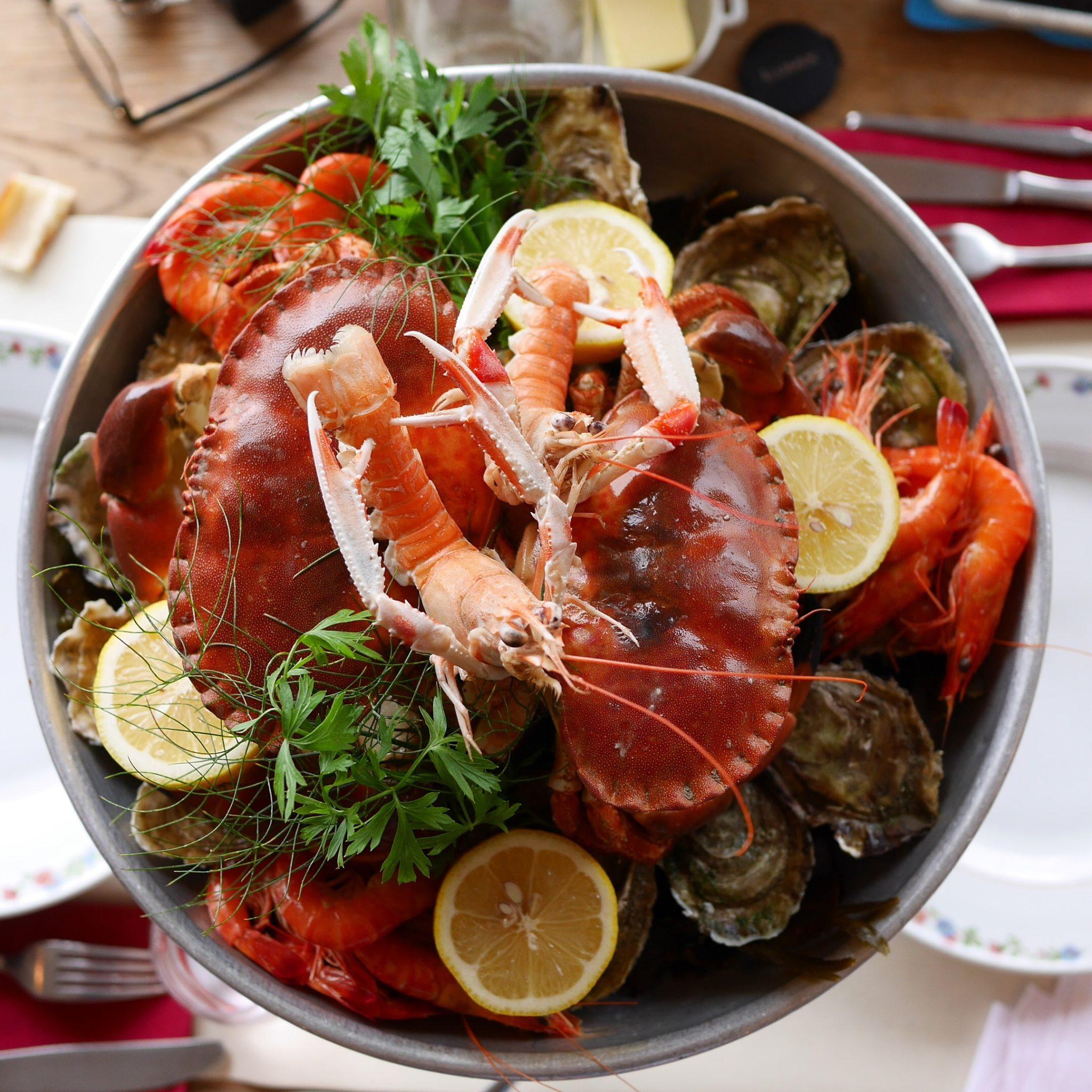 restaurant du port omonville la rogue fruits de mer